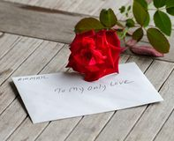 A stalk of red rose with love Royalty Free Stock Images