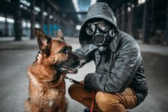 Stalker and dog, survivors in danger zone. Stalker in gas mask and dog in abandoned building, survivors in danger zone after nuclear war. Post apocalyptic world Stock Photos