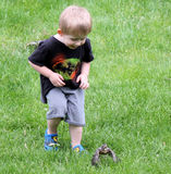 Stalking. Young robin attempts to fly as a small child follows its progress Stock Images