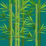 Stalks of bamboo with green leaves flat theme in realistic Stock Photography