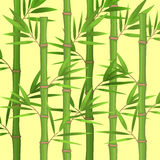 Stalks of bamboo with green leaves flat theme in realistic Royalty Free Stock Photos