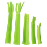 Stalks of Celery Stock Photo