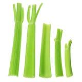 Stalks of Celery Stock Photo