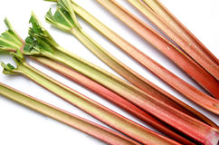 Stalks of fresh rhubarb Royalty Free Stock Photography