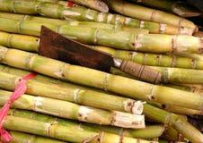 Stalks of Fresh Sugar Cane Royalty Free Stock Photography