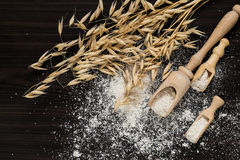The stalks of oats and oat flour Royalty Free Stock Images