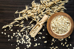 The stalks of oats and oatmeal Stock Images