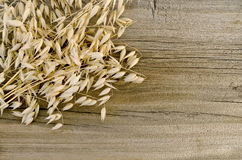Stalks of oats on an old wooden board Stock Image