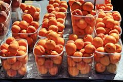 Stall with apricots at street market royalty free stock image