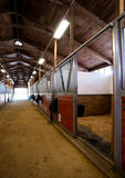Stall Center Path Horse Paddack Equestrian Stable Royalty Free Stock Photo