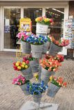 Stall with colorful dutch wooden tulips. In buckets in front of a shop in Netherlands Stock Photo
