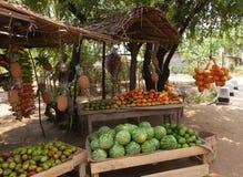 Stall för fruktförsäljare` s i Sri Lanka med kokosnöten, mango och waterme arkivbild