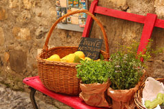 Stall. Genuine products of vegetable garden Stock Photo