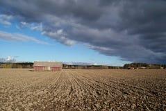 Stall, Himmel und gepflogene Feld-Landschaft lizenzfreies stockfoto