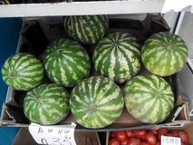 Stall with  watermelons Stock Photo