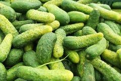 Stalla dei cetrioli nel mercato Immagine Stock