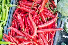 stalla dei peperoncini rossi al mercato Fotografia Stock