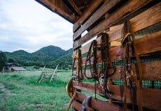 Stalla del cavallo Fotografia Stock
