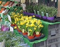 Stalla del mercato del veg e della frutta Immagini Stock Libere da Diritti