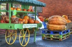 Stalla del mercato delle zucche Immagine Stock Libera da Diritti