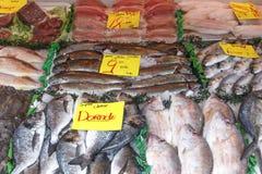 Stalla del pesce immagine stock libera da diritti