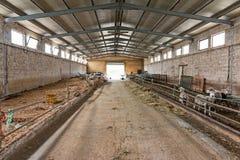 stalla delle pecore Fotografia Stock Libera da Diritti