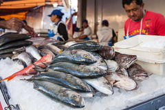 Stalle de poissons Photos libres de droits