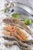 Stalle de poissons sur la glace écrasée. Supermarché, département de poissons Image libre de droits