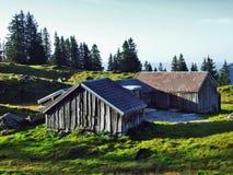 Stallen en landbouwbedrijven op het plateau onder de bergketens Churfirsten royalty-vrije stock fotografie