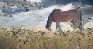 stallion vector illustratie