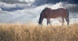 stallion Gebied van tarwe royalty-vrije illustratie