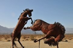 Stallion Horse Metal Sculpture at Anza Borrego Desert California. Stallion horse metal sculptures in the Anza Borrego Desert. Sculptures are public art displayed stock image