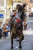 Stallion rearing with rider in Brasov, Romania. Brown spirited stallion rears with unidentified rider of Old Junii group during the old traditional parade of the Stock Images