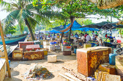 The stalls of Galle Fish Market Stock Photography