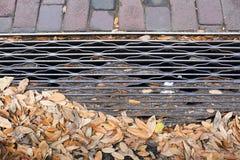 Stalowa drenaż kratownica z cegłami i liśćmi zdjęcie stock