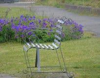 Stalowej ławki kwiatu błękitny tło Fotografia Stock