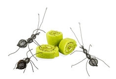 Stalowy mrówki i torta rola Zdjęcia Stock