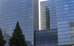 Stalowy szklany budynek z drzewem obrazy stock