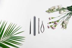 Stalowych szarość manicure'u narzędzia są na stole w centrum skład, obok palmy zieleni liścia i światła - menchia kwiaty zdjęcia royalty free