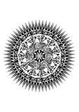 stam- Royaltyfria Bilder