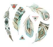 Stam- fjäderuppsättning för vattenfärg stock illustrationer