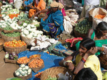 stam- grönsakkvinnor för ny sell arkivbilder