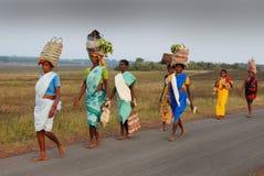 stam- india folk Arkivbilder