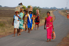 stam- india folk Arkivfoto