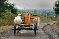 stam- india folk Royaltyfri Foto