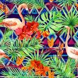 Stam- modell, tropiska sidor, flamingofåglar Upprepad infödd bakgrund vattenfärg Royaltyfri Bild