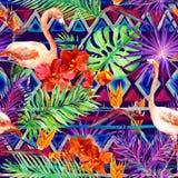 Stam- modell, tropiska sidor, flamingofåglar Upprepad infödd bakgrund vattenfärg Royaltyfri Fotografi