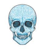 Stam- stil för mänsklig skalle Tatueringblackwork Tecknad illustration för vektor hand Boho Royaltyfri Foto