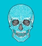 Stam- stil för mänsklig skalle Tatueringblackwork Tecknad illustration för vektor hand Boho Royaltyfria Foton