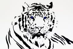 Stam- svart kontur för vit tiger royaltyfria foton
